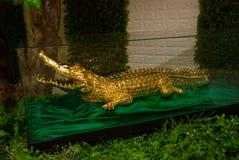 Заполненное золото крокодила sarawak граничат Малайзия Стоковая Фотография