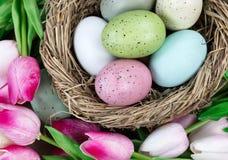 Заполненный конец рамки вверх гнезда птицы заполнил с пасхальными яйцами с Стоковое Изображение RF