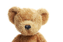 заполненный медведь Стоковое Изображение