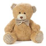 заполненный медведь Стоковая Фотография RF