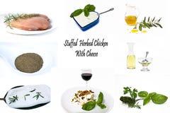 заполненный рецепт цыпленка сыра herbed colage Стоковая Фотография RF
