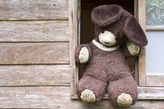 заполненная старая медведя Стоковые Фото