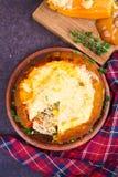 Заполненная тыква с мясом, рисом, грибами, перцем и тимианом Стоковое Изображение