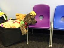 Заполненные игрушки медведя и льва Стоковое фото RF