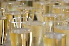 Заполненные стекла шампанского Стоковая Фотография