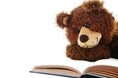 Заполненный медведь читая изолированную книгу на белизне Стоковое Изображение