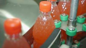 Заполняя лимонад в пластичных бутылках ЛЮБИМЧИК стикера транспортера индустрии ярлыка бутылки лимонада упаковывая на транспортере сток-видео