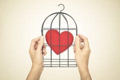 запрещенная влюбленность Стоковые Изображения RF