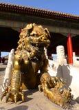 запрещенный городом львев радетеля имперский Стоковое Изображение