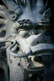 запрещенный дракон Стоковые Изображения