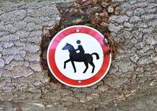 запрещенный riding лошади Стоковые Фото