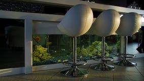 Заприте против с стульями в пустом удобном ресторане с аквариумом Белые стулья бара стоят около белого счетчика бара акции видеоматериалы