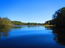 Запруда на реке Withalacoochee стоковое фото rf