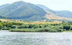 Запруда от конематки Valea реки от Hateg Румынии, гор Retezat Стоковые Изображения RF