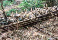 Запруда проверки сделанная местными материалами; древесина, почва, каменный etc стоковые фото