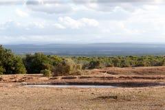 Запруда - ландшафт Addo Стоковая Фотография
