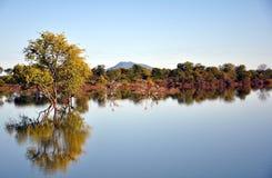 Запруда Nyati & Mt Towla, охрана природы долины Bubye, Зимбабве Стоковое Изображение
