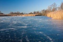 запустелый кататься на коньках места Стоковое Изображение
