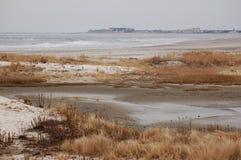 Запустелые заболоченные места зимы Стоковое фото RF