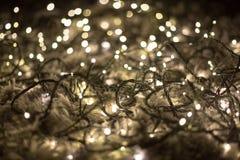 Запутанные fairy света Стоковые Фото