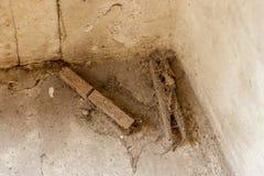 2 запыленная зажимка для белья в угле Стоковые Фото
