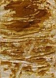 запятнанная бумага Стоковое Изображение RF