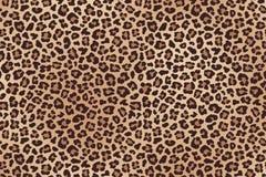 Запятнанная леопардом текстура меха вектор Стоковые Изображения RF