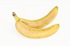 запятнанные бананы Стоковая Фотография RF