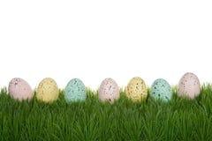 Запятнанные пасхальные яйца в ряд на траве изолированной на белизне Стоковое Изображение