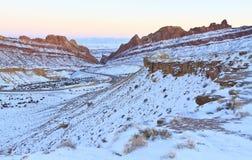 Запятнанный каньон волка обозревает Стоковое Фото