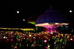 Заплата цветков сделанных светами СИД и гигантским грибом в парке Стоковое фото RF