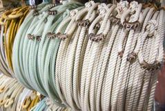Заплетенная веревочка Lariat Стоковое Фото