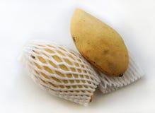 Заплетенный индеец манго Стоковые Фотографии RF
