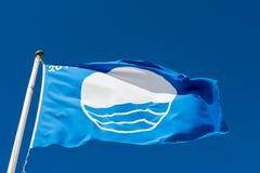 Заплывание голубого флага Стоковые Изображения