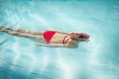заплывание девушки подводное Стоковое Изображение