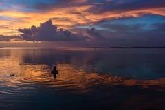 Заплывание женщины во время захода солнца на тропическом положении портового района Стоковое фото RF