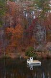Заплывание осени Стоковая Фотография