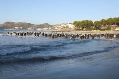 Заплывание тренировки спорта triathlete триатлона здоровое стоковые фотографии rf