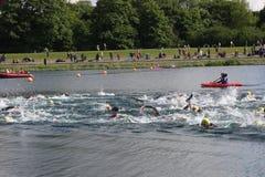 Заплывание триатлона спорта стоковые изображения rf