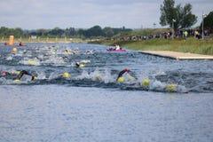 Заплывание триатлона спорта стоковые фотографии rf
