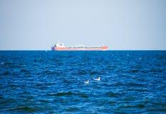 Заплывание чайки в голубом море, океане, предпосылке корабля Стоковое Изображение