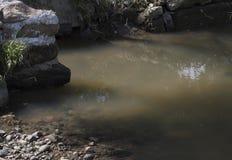 зараженная вода стоковое изображение