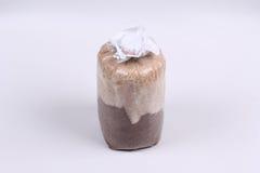 Зараженная сумка гриба бамбукового гриба, завуалированного гриба дамы Стоковые Фото
