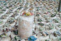 Зараженная сумка гриба. Стоковые Изображения RF