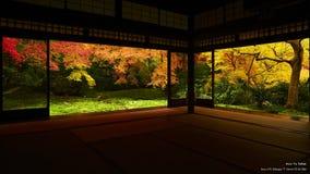 Зарево в саде Стоковые Изображения