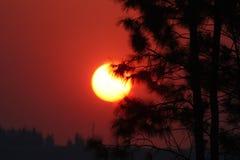 Зарево захода солнца Стоковое Изображение RF