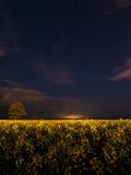Зарево на ноче Стоковые Изображения RF