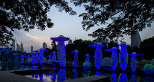 Зарево сада Дубай Стоковая Фотография RF