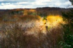 Зарево Солнця в ущелье Стоковая Фотография RF