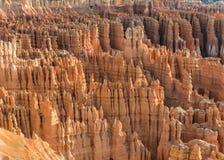 Зарево утра каньона Bryce стоковые изображения rf